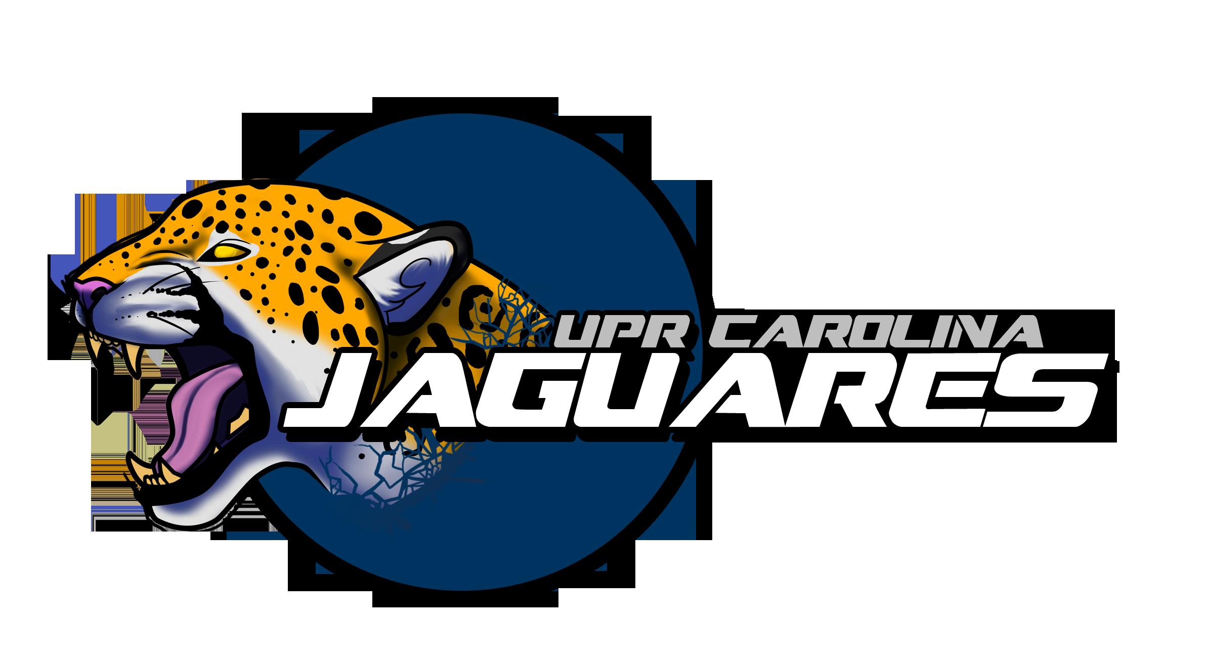 Jaguar nuevo