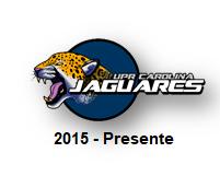 Botón Transcripción 2015-Presente